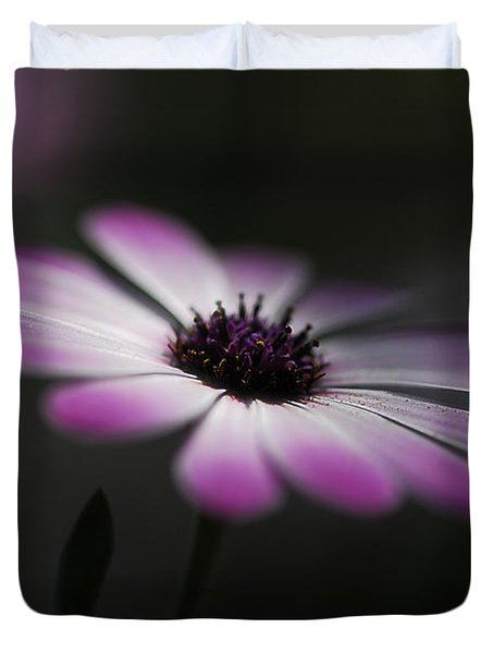 Spring Daisy Duvet Cover by Saija  Lehtonen