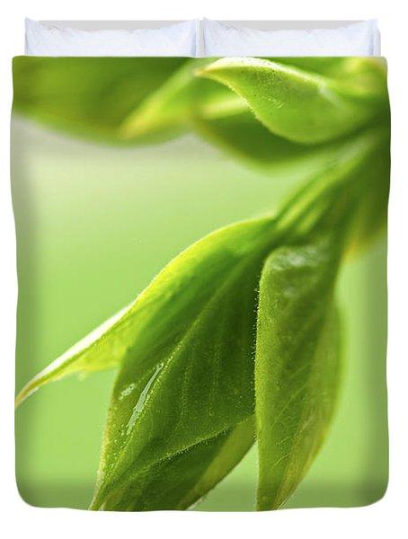 Spring Green Leaves Duvet Cover by Elena Elisseeva