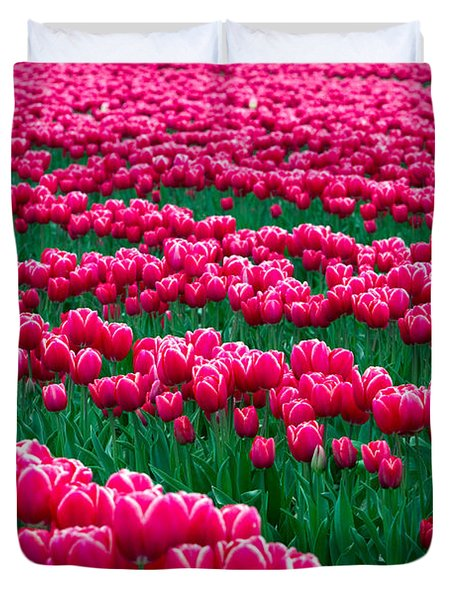 Spring Tulips Duvet Cover by David R Frazier and Photo Researchers