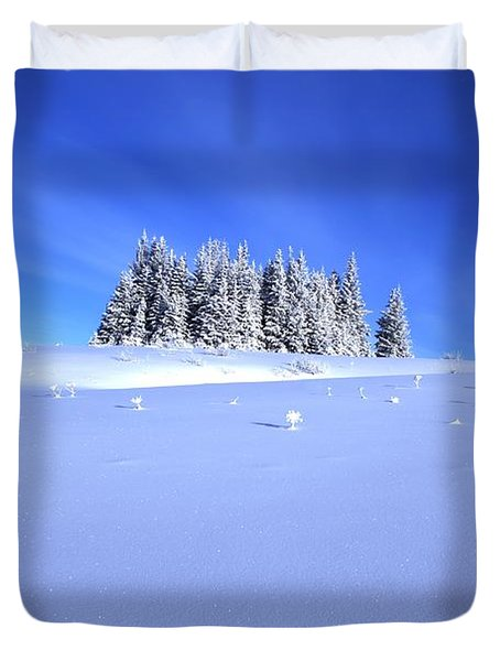 Duvet Cover featuring the photograph Spruce Grove In Winter by Michele Cornelius