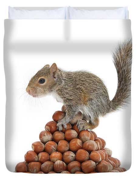 Squirrel And Nut Pyramid Duvet Cover by Mark Taylor