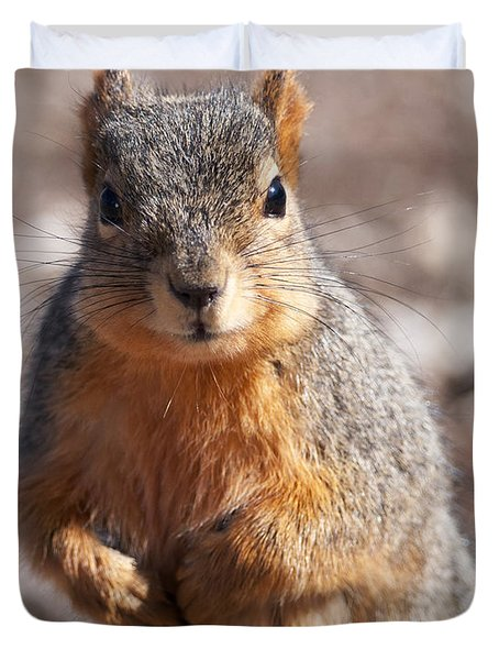 Squirrel Duvet Cover by Art Whitton