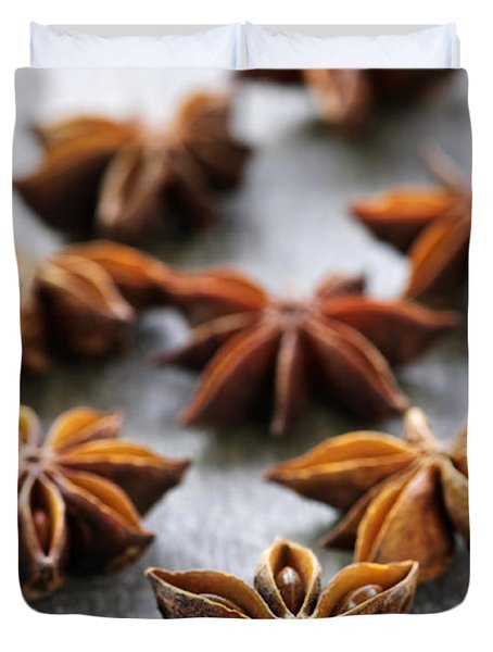 Star Anise Fruit And Seeds Duvet Cover by Elena Elisseeva