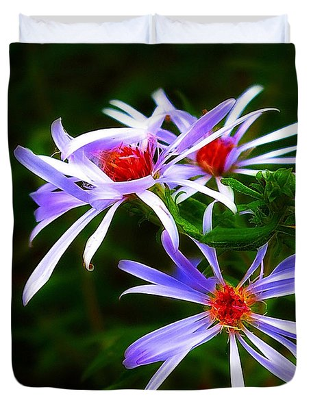 Stars Of Spring Duvet Cover by Judi Bagwell