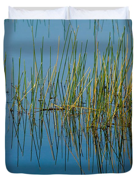 Still Water And Grasses Duvet Cover by Rich Franco
