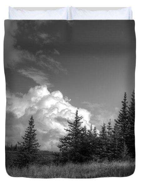 Storm Clouds Building Duvet Cover by Michele Cornelius