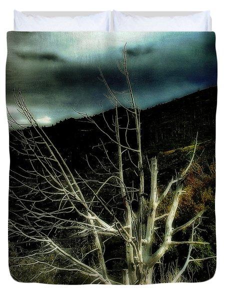 Storm Over The Jemez Mountains Duvet Cover by Ellen Heaverlo