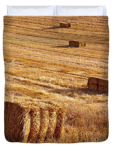 Straw Field Duvet Cover by Carlos Caetano