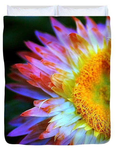 Strawflower Duvet Cover by Judi Bagwell