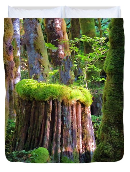 Stump And Moss  Duvet Cover