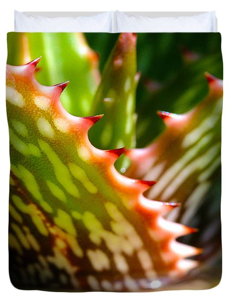 Succulents With Spines Duvet Cover by Judi Bagwell