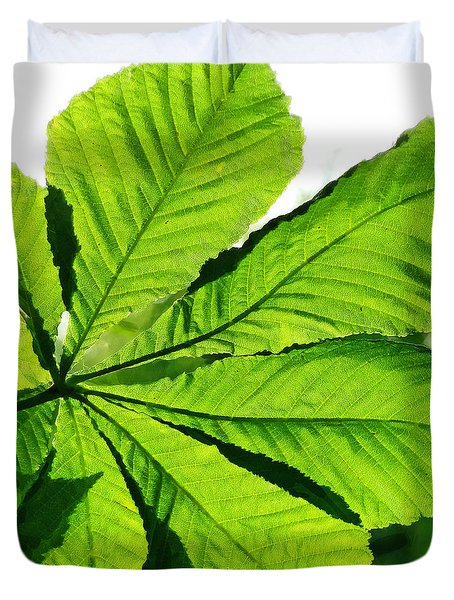 Duvet Cover featuring the photograph Sun On A Horse Chestnut Leaf by Steve Taylor