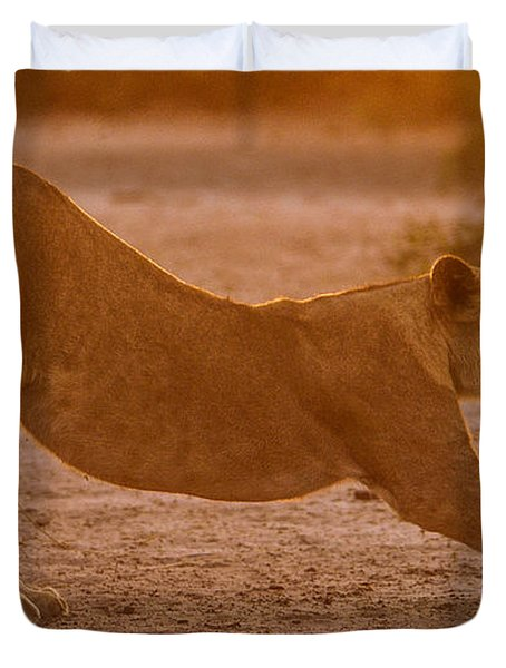 Sun Stretch Duvet Cover
