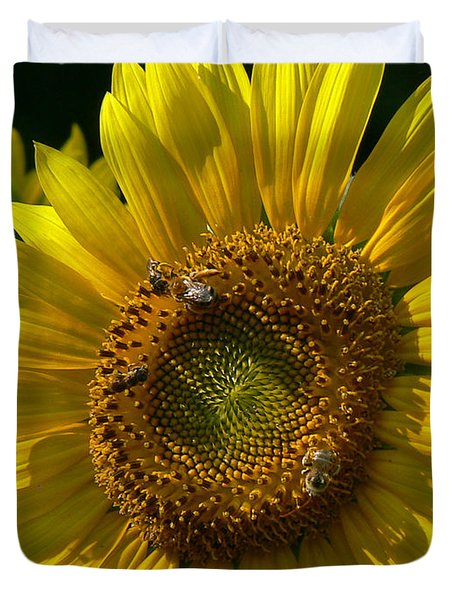 Sunflower 4 Duvet Cover by EricaMaxine  Price