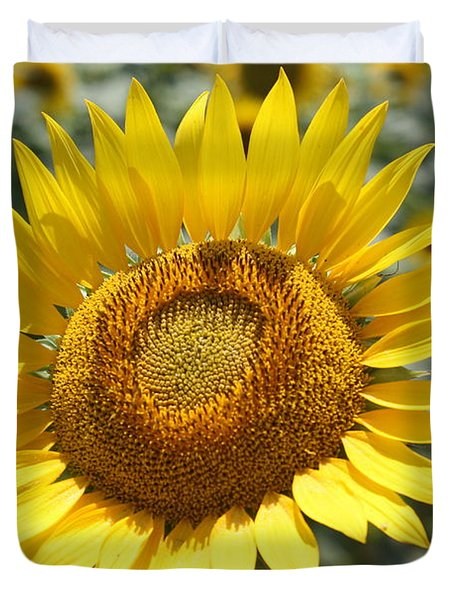 Duvet Cover featuring the photograph Sunflower by Donna  Smith