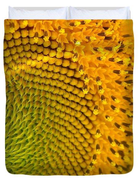 Sunflower Study 1 Duvet Cover