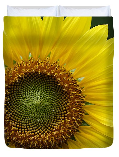 Sunflower With Insect Duvet Cover