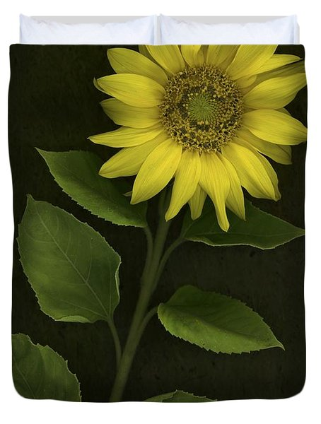 Sunflower With Rocks Duvet Cover by Deddeda