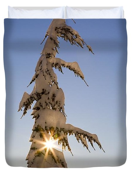 Sunlight Through Snow-covered Tree Duvet Cover by Craig Tuttle