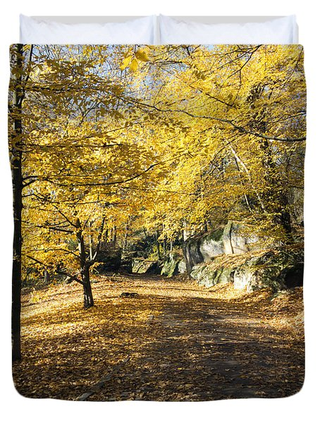 Sunny Day In The Autumn Park Duvet Cover by Michal Boubin