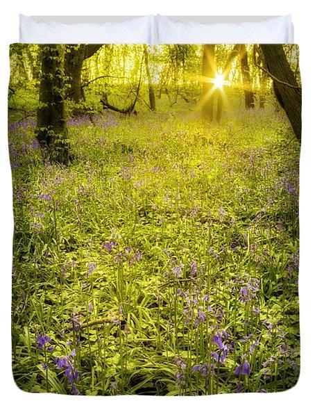 Sunrise In Bluebell Woods Duvet Cover by Amanda Elwell