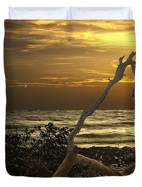 Sunset West II Duvet Cover by Bruce Bain