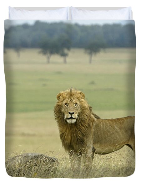 Surveying His Kingdom Duvet Cover by Michele Burgess