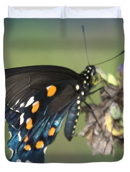 Duvet Cover featuring the photograph Swallowtail 1 by Judy Hall-Folde