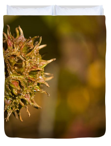 Sweetgum Seed Pod Duvet Cover by Heather Applegate