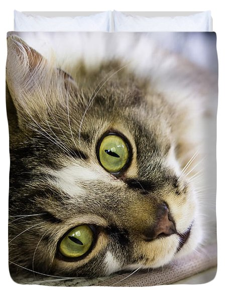 Tabby Cat Looking At Camera Duvet Cover