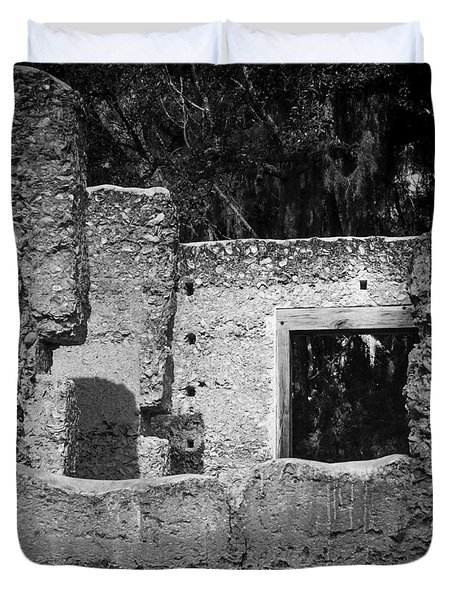 Tabby Ruins Duvet Cover by Lynn Palmer