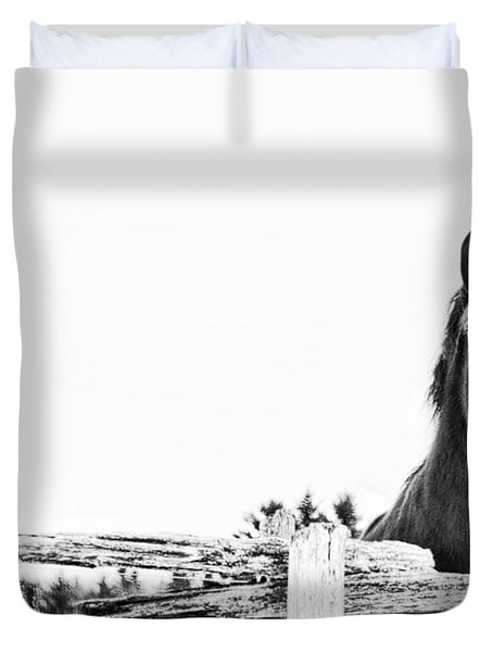 Take Me For A Ride Duvet Cover