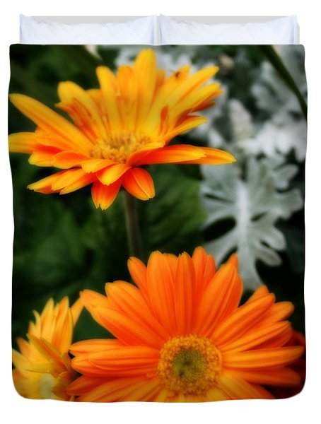 Tangerine Colored Gerbera Daisies Duvet Cover by Kay Novy