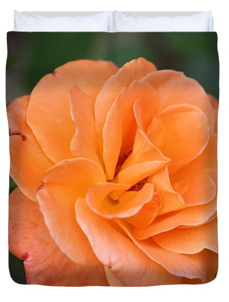 Duvet Cover featuring the photograph Tangerine Rose by Donna  Smith