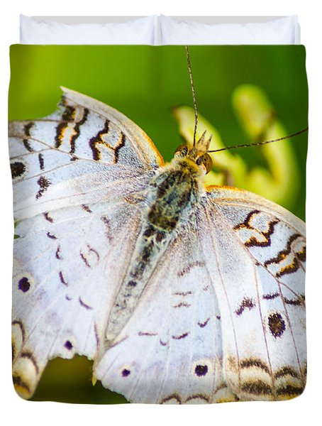 Duvet Cover featuring the photograph Tattered Moth by Shannon Harrington