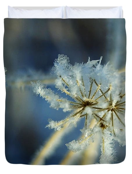 The Beauty Of Winter Duvet Cover