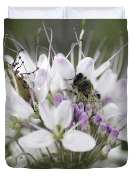 The Beetle And The Bee Duvet Cover