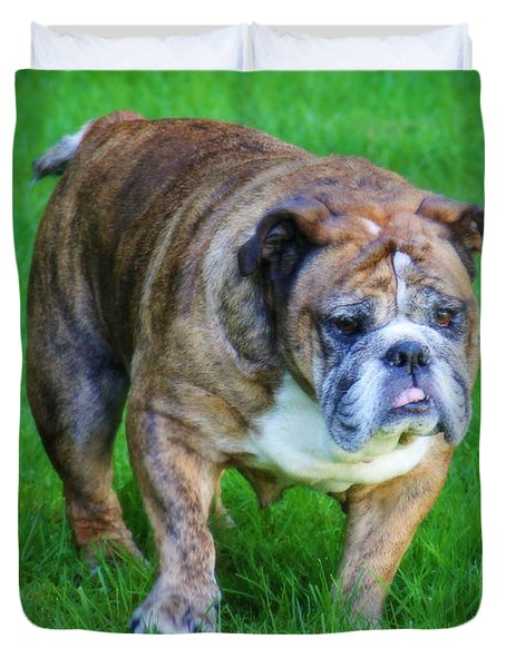 Duvet Cover featuring the photograph The Bulldog Shuffle by Jeanette C Landstrom
