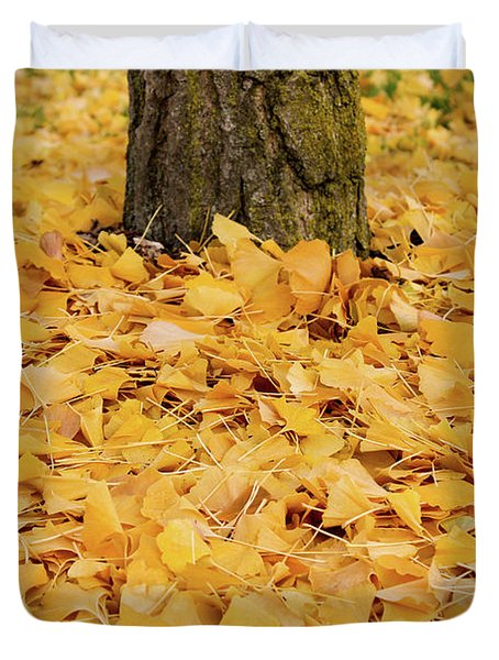 Duvet Cover featuring the photograph The Fall Of Ginkgo by Rachel Cohen