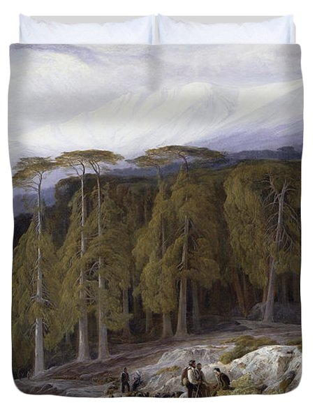 The Forest Of Valdoniello - Corsica Duvet Cover by Edward Lear