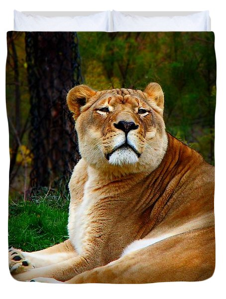 The Lioness Duvet Cover by Davandra Cribbie