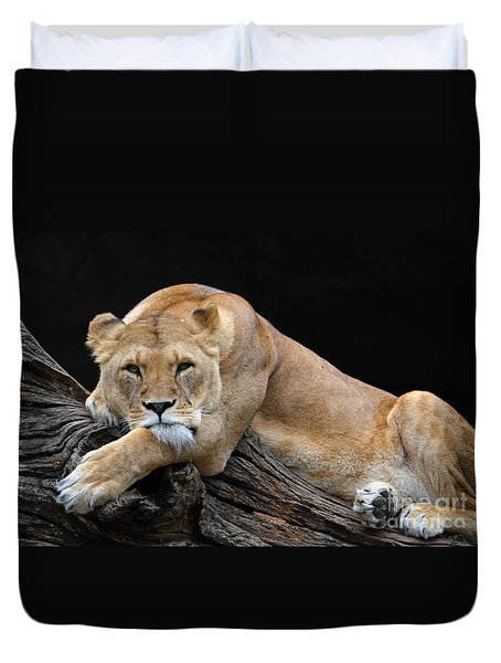 The Lioness Is Watching You Duvet Cover by Eva Kaufman