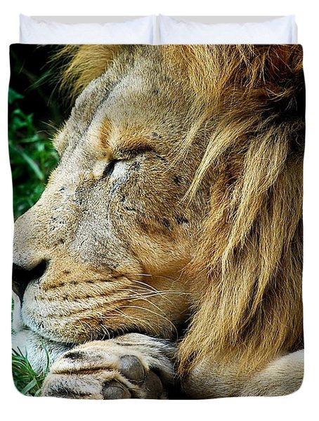 The Lions Sleeps Duvet Cover