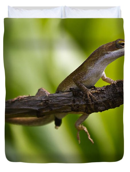 The Lookout Duvet Cover by Roger Mullenhour