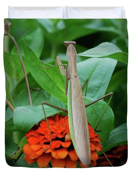 Duvet Cover featuring the photograph The Patience Of A Mantis by Thomas Woolworth