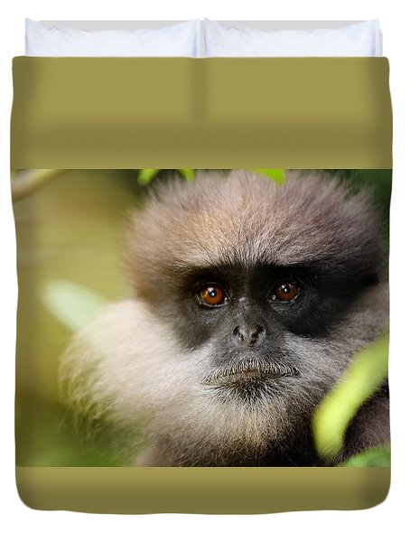 The Purple-faced Langur. Nuwara Eliya.sri Lanka Duvet Cover by Jenny Rainbow