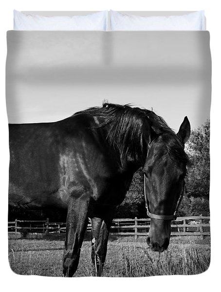 Duvet Cover featuring the photograph The Stallion by Davandra Cribbie