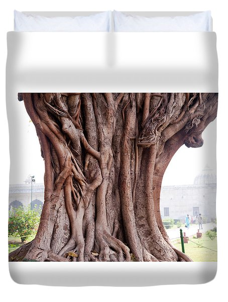 The Twisted And Gnarled Stump And Stem Of A Large Tree Inside The Qutub Minar Compound Duvet Cover by Ashish Agarwal