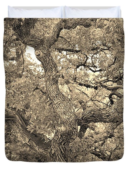 The Wicked Tree Duvet Cover