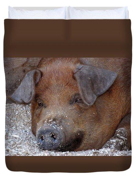 This Little Piggy Took A Nap Duvet Cover